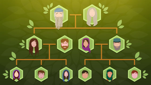 Bamidbar: Who Cares About Genealogy?